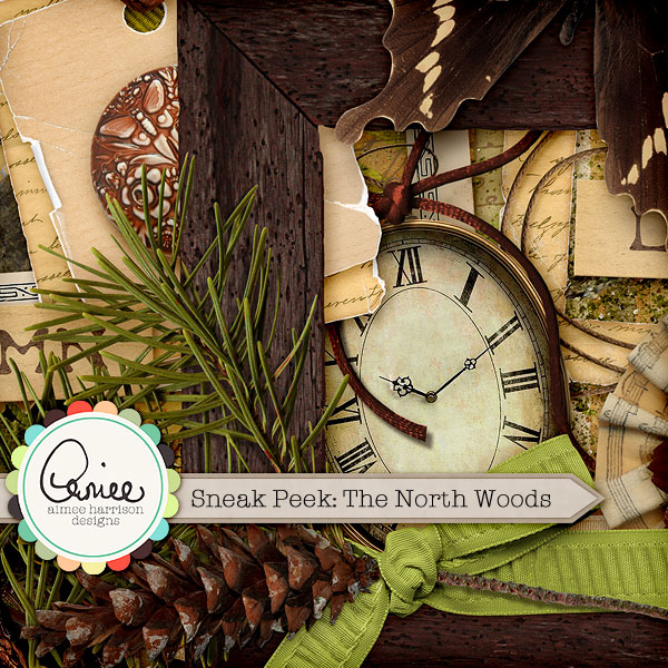 Sneak Peek! The North Woods by Aimee Harrison