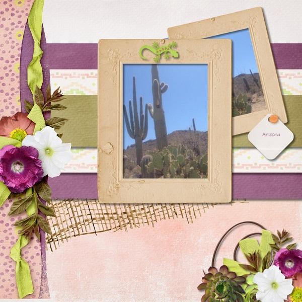 (Maureen) AH Desert Rose - mm 2 - 600 (2)