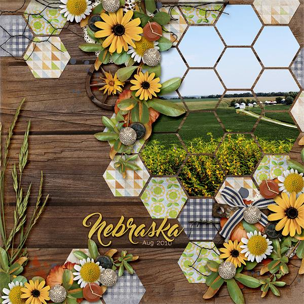 Layout by Aimee (template: Sunny Day #4 by Heartstrings Scrap Art)