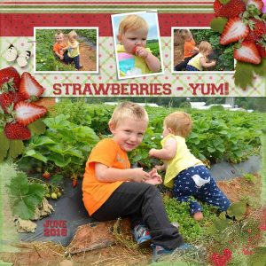 Strawberry Fields - layout by Kathy (template: Lots and Lots #4 by Heartstrings Scrap Art)